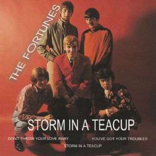 The Fortunes - Storm In A Teacup
