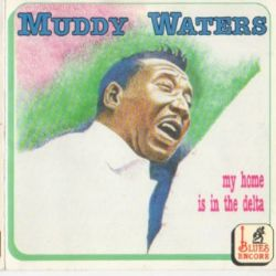 CD Muddy Waters - My Home Is In The Delta